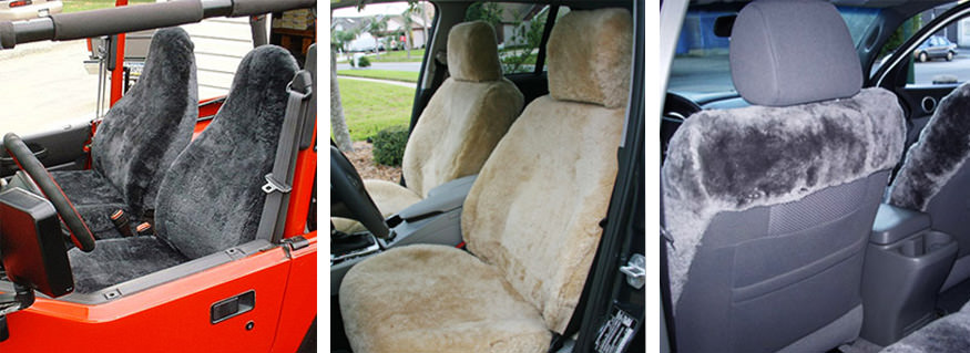 Sheepskin displayed in car seats