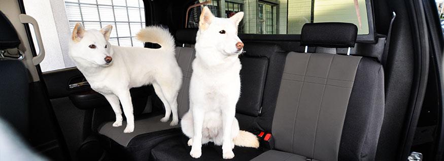 CORDURA® Seat Covers