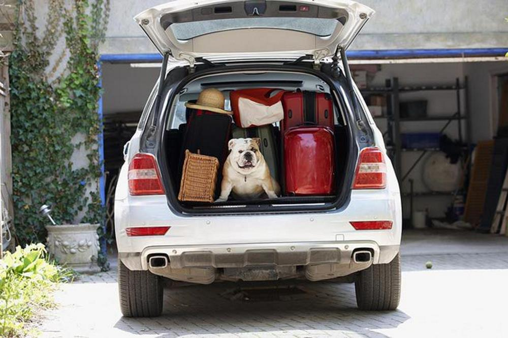 Road Tripping and Packking Your Car Right